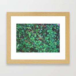 Emerald Cosmoss Framed Art Print