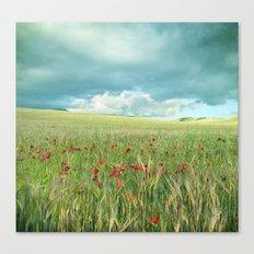 Spring poppies. Vintage Canvas Print