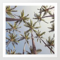 palm trees Art Prints featuring Palm Trees  by Bree Madden