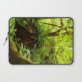 Rainforest Ferns Laptop Sleeve