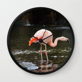 Pink on Two Legs Wall Clock