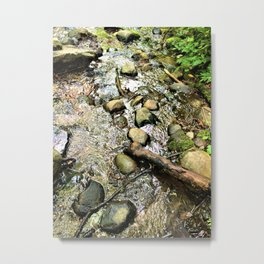Wildwood Creek Metal Print