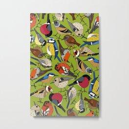 winter garden birds lime Metal Print