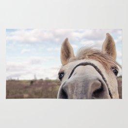 look at my horse... Rug