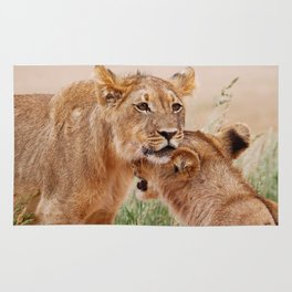 Two young lions - Africa wildlife Rug