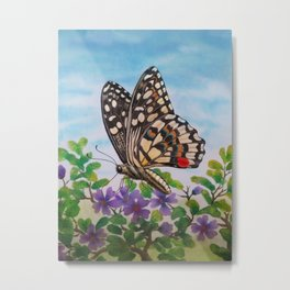 Chequered swallowtail  Metal Print