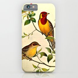 Red-Headed Bunting iPhone Case