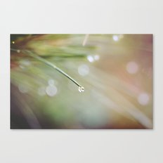 Birthplace of Your Dreams Canvas Print