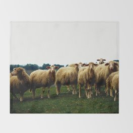 Sheep on a Grassy Hill Throw Blanket