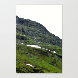 Mossy Mountains Canvas Print
