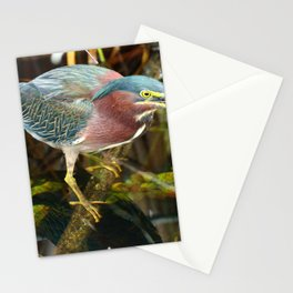 Me And My Reflection Stationery Cards