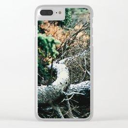 Downed Trees in Fall Season at Denali National Park, Alaska Clear iPhone Case