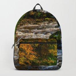Autumn Rapids Backpack