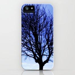 WinterMorning iPhone Case