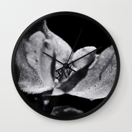 Flower in Sunlight Wall Clock