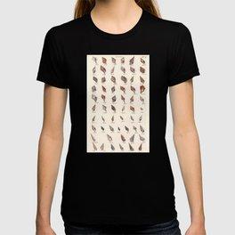 Vintage Sea Shells T-shirt