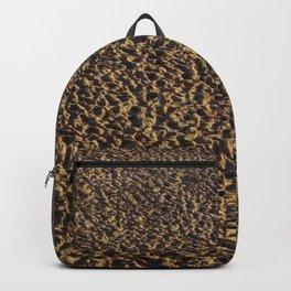 Sandy landscape Backpack