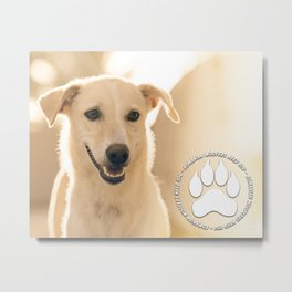 Romanian Woofers Need You Metal Print