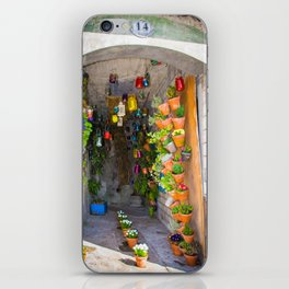 The Enchantress' House iPhone Skin