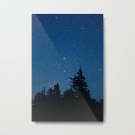 Starry Night Above the Forest Metal Print