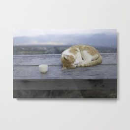 Stray Cat in Vietnam Metal Print