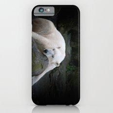 Resting  iPhone 6s Slim Case
