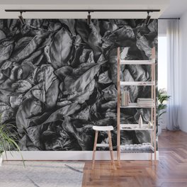 closeup leaf texture in black and white Wall Mural