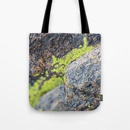 lichen on a hike Tote Bag