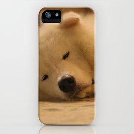 padpad iPhone Case
