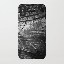McConnells Mill iPhone Case