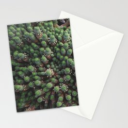 Cactus family from above | Lanzarote Cactus Garden | Botanical fine art nature photography | Stationery Cards