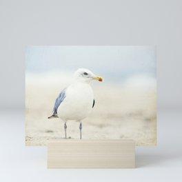 Seagull Beach Photography, Coastal Bird Jersey Shore Art, Blue White Seashore Birds Photo Mini Art Print