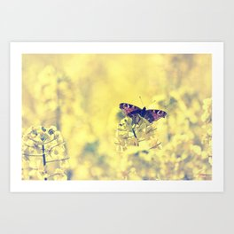Sunshine and Butterflies Art Print