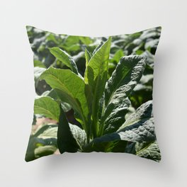 Lush in Green Throw Pillow