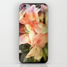 Playing with beauty iPhone & iPod Skin