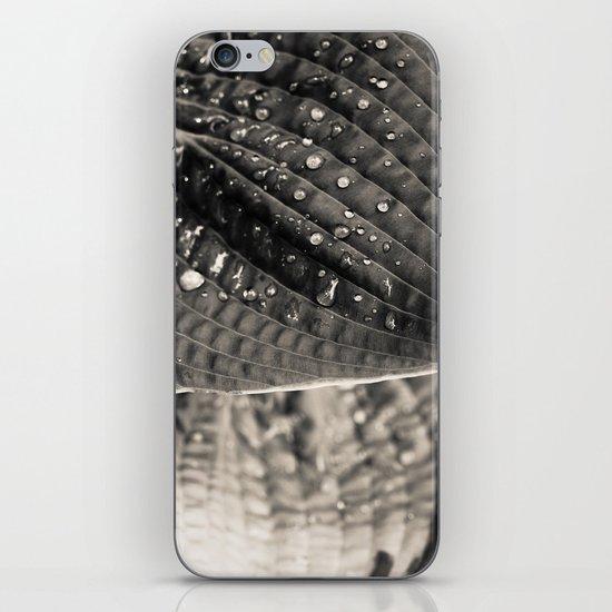 Merge iPhone & iPod Skin