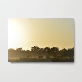 Outback Sunrise Metal Print