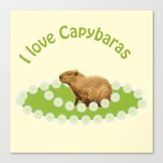 I love Capybaras Canvas Print