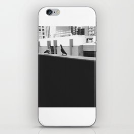 two pigeons iPhone Skin