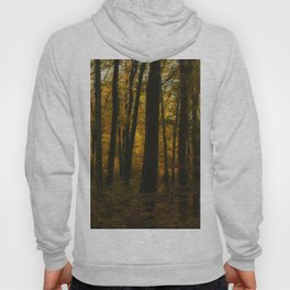Sunset in the autumn forest Hoody