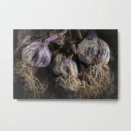 Photograph of garlics Metal Print