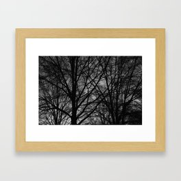 Thick Silhouetted Trees Framed Art Print