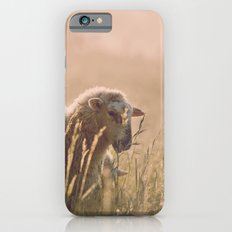 sunrise iPhone 6s Slim Case
