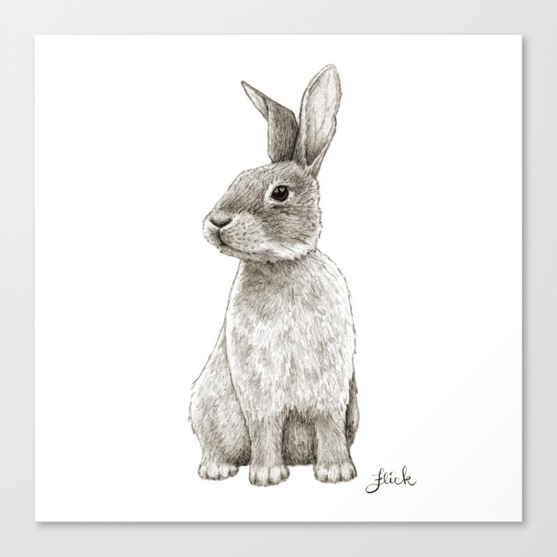 - Rabbit Artwork -