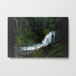 Forest sweat Metal Print