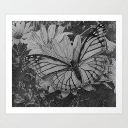 Monarch over Aster Art Print