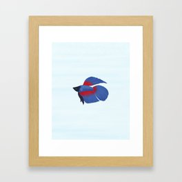 betta splendens royal blue male Framed Art Print