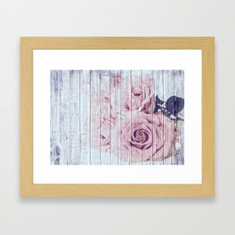 Shabby Chic Dusky Pink Roses On Blue Wood Background Framed Art Print