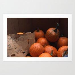 Pumpkins In a Box! Art Print