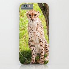 Hey Kitty Slim Case iPhone 6s